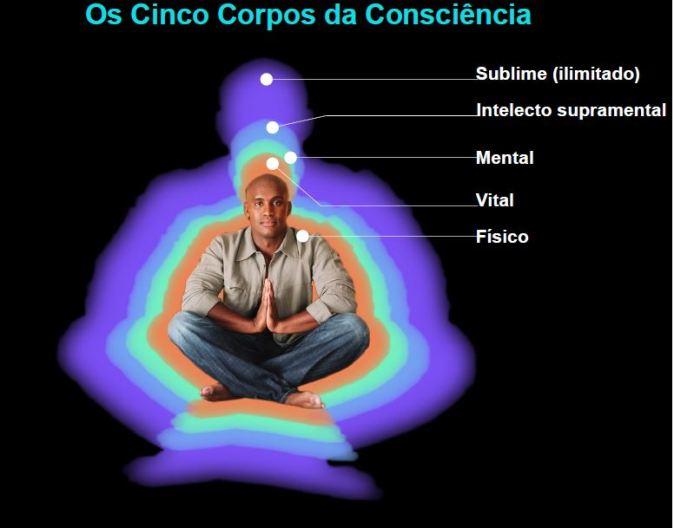 corpos-da-consciência