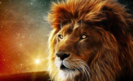 leão-magnifico