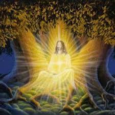 The Evolution of Christ Consciousness