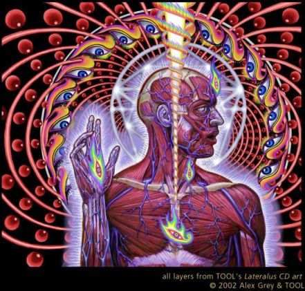 lateralus_cd_art_tool