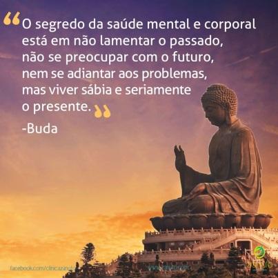 O-segredo-da-saude-mental-e-corporal-esta-em-nao-lamentar-o-passado-nao-se-preocupar-com-o-futuro-nem-se-adiantar-aos-problemas-mas-viver-sabiamente-e-seriamente-o-presente.-Buda