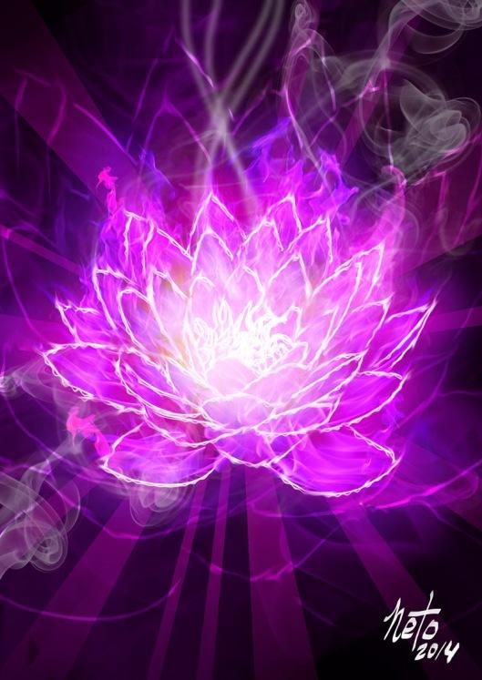 lotus_fogo_violeta2